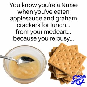 Applesauce and graham crackers for lunch