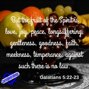 But the fruit of the Spirit is love