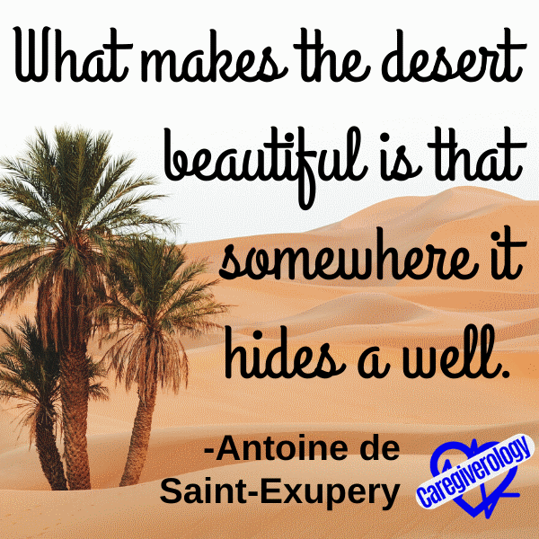 What makes the desert beautiful