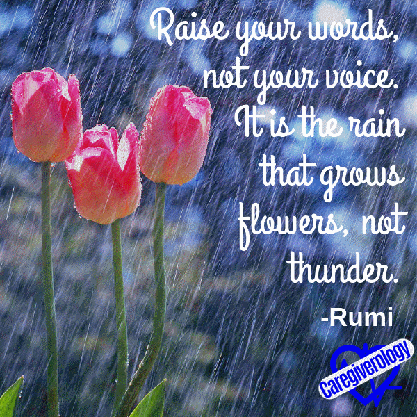 Raise your words, not your voice
