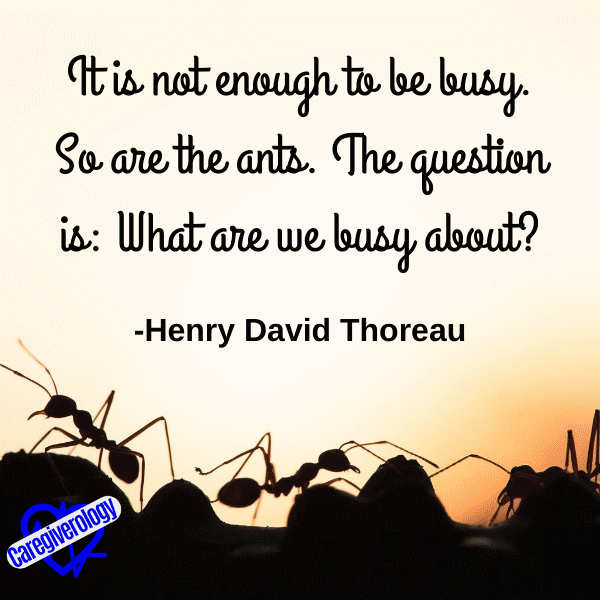It is not enough to be busy
