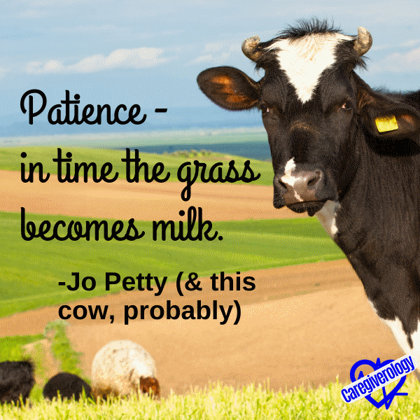 Patience - in time the grass becomes milk