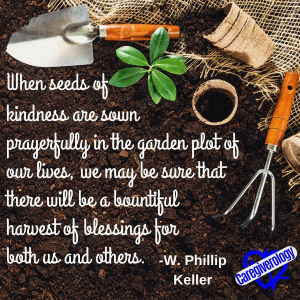 When seeds of kindness are sown