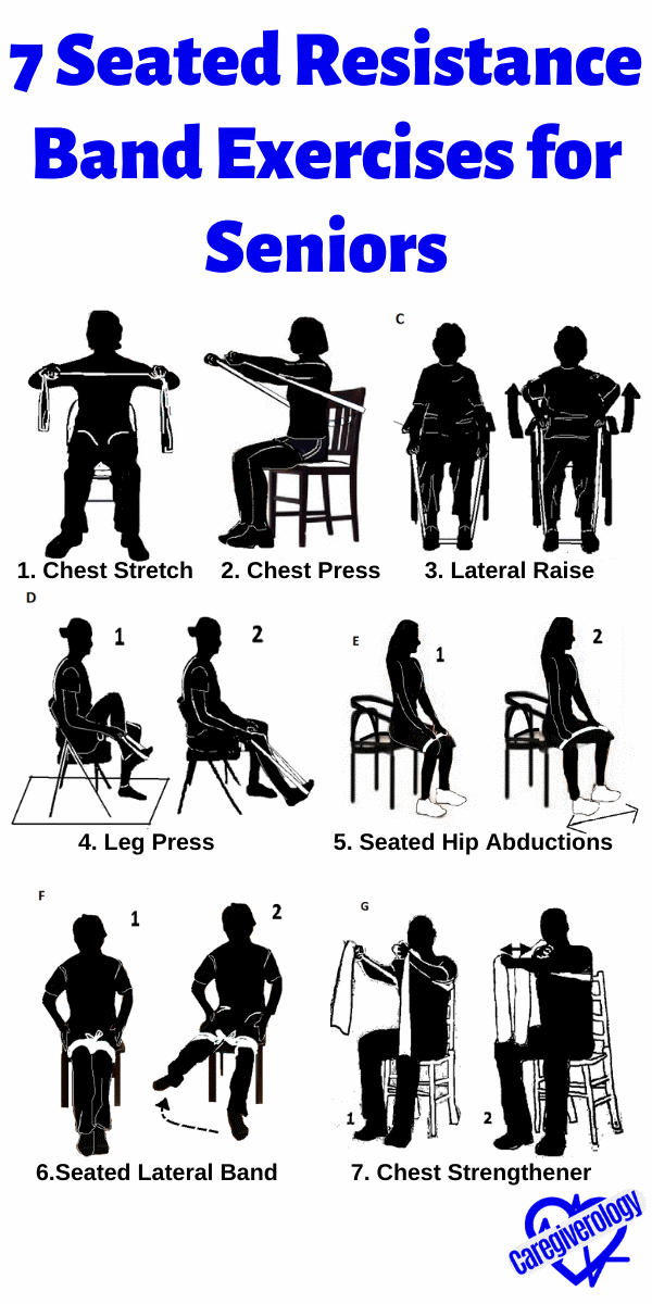 7 Seated Resistance Band Exercises for Seniors Infographic