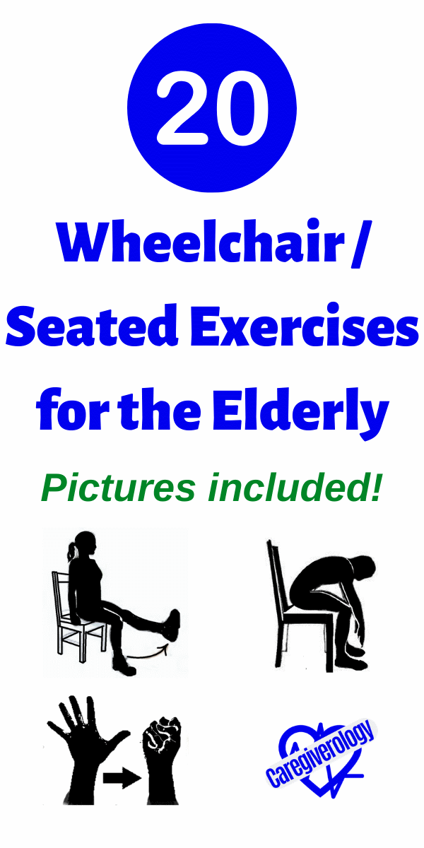 20 Wheelchair / Seated Exercises for the Elderly